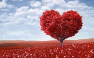 Kaj je ljubezen?