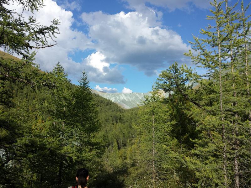 Potovanje na Altaj